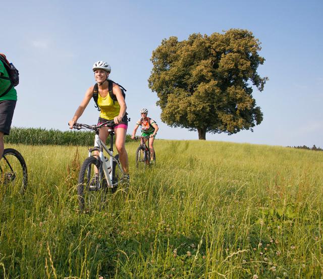 Gruppe von Radfahrern