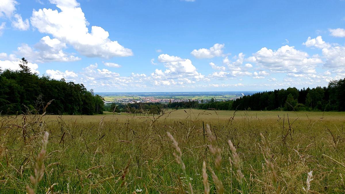 Panorama Blick bei Ehingen