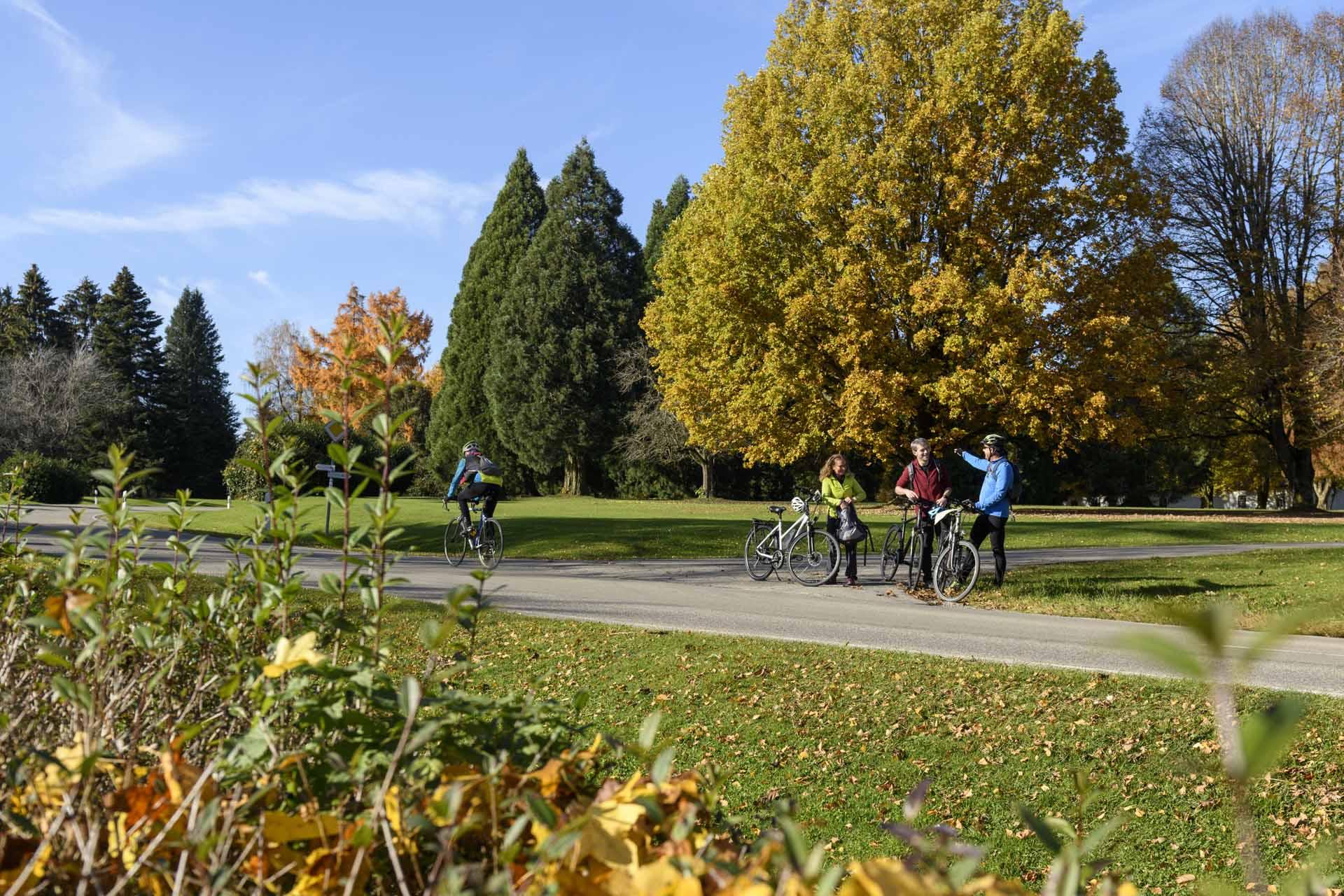 Radfahren Herbst